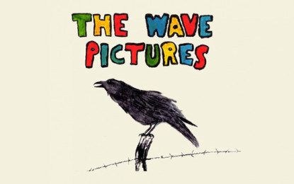 The Wave Pictures, nuovo album: City Forgiveness