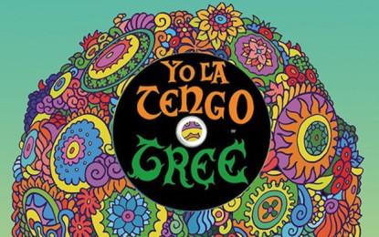 Yo La Tengo: Fade in versione deluxe, e un set di DVD+bamboline