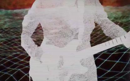 Oggetti volanti (non) identificati, viaggi spaziali e crop circles nel video dei Broken Bells per Control