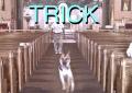Alex G ristampa i suoi album Rules e Trick, ascolta un inedito, Sarah