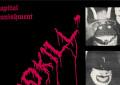 La Captured Tracks ristampa un disco di Ben Stiller