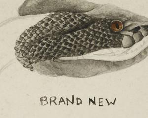 Ascolta: Brand New, Mene
