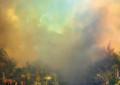 I dettagli del nuovo album di Joanna Newsom, Divers, guarda il video di Sapokanikan