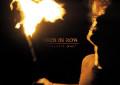I Birds in Row annunciano un nuovo album, Personal War, ascolta due canzoni