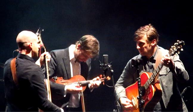 SI Bird band acoustic