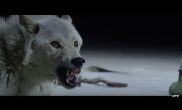 Guarda: The Kills, Siberian Nights