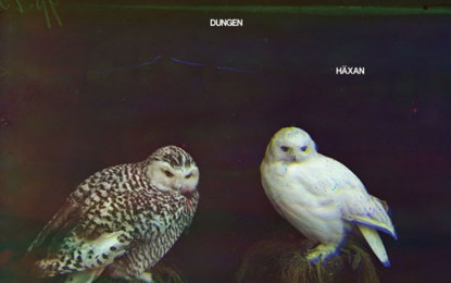 I Dungen tornano con Häxan, ascolta il primo estratto
