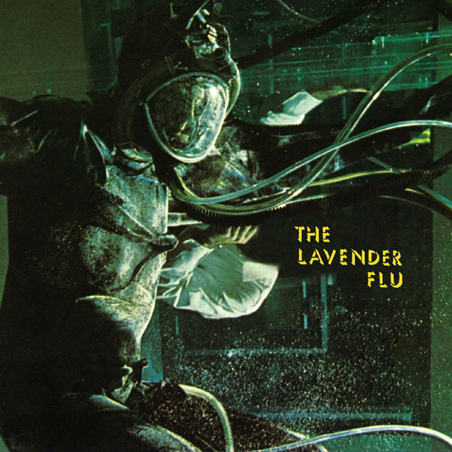 lavender-flu