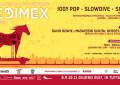 Il programma del Medimex a Bari con Iggy Pop, Slowdive e Solange