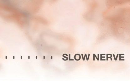 Ascolta in anteprima il debutto degli Slow Nerve